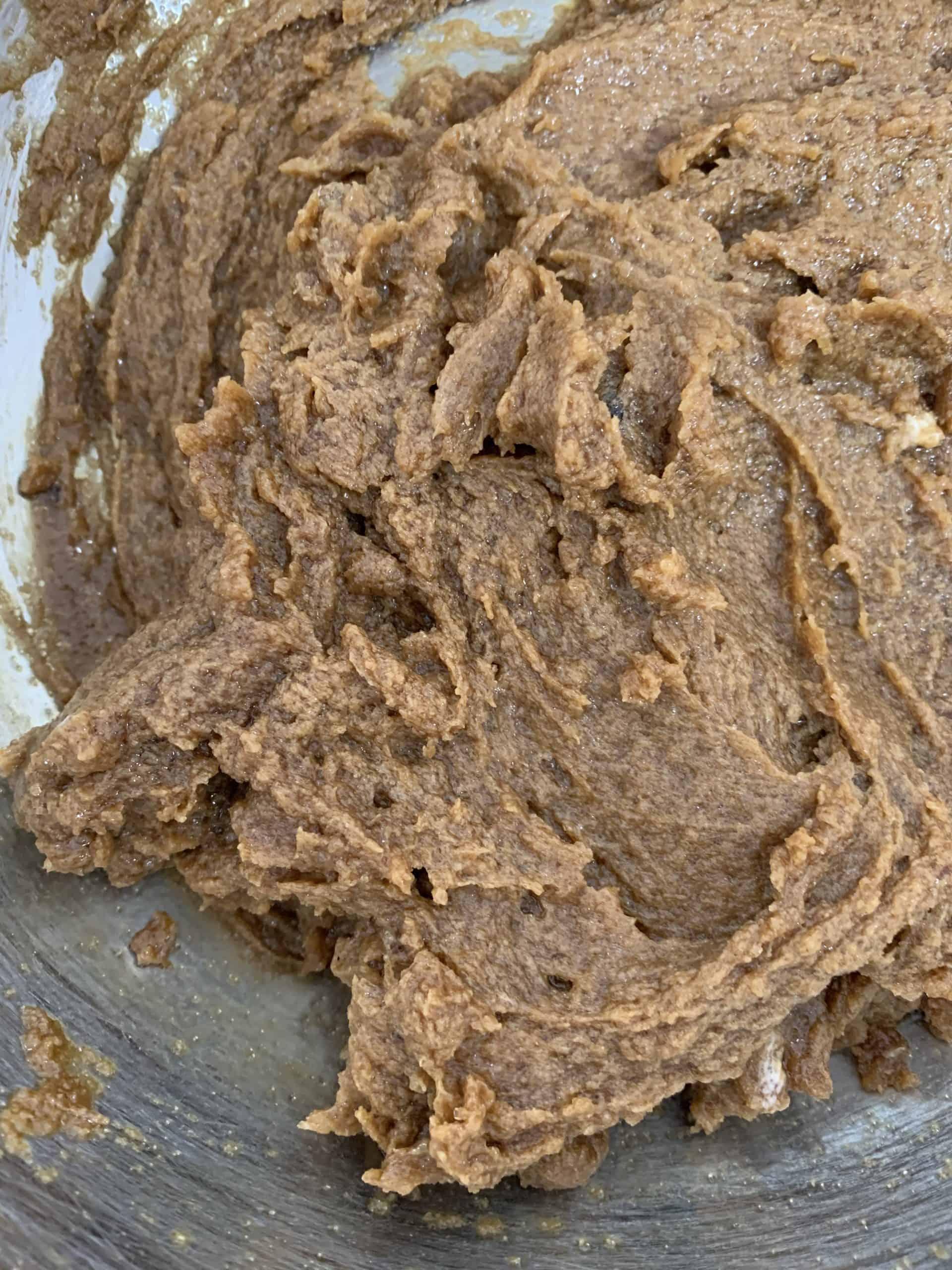ריבועי עוגת שוקולד צ'יפס | צילום: ספיר דהן