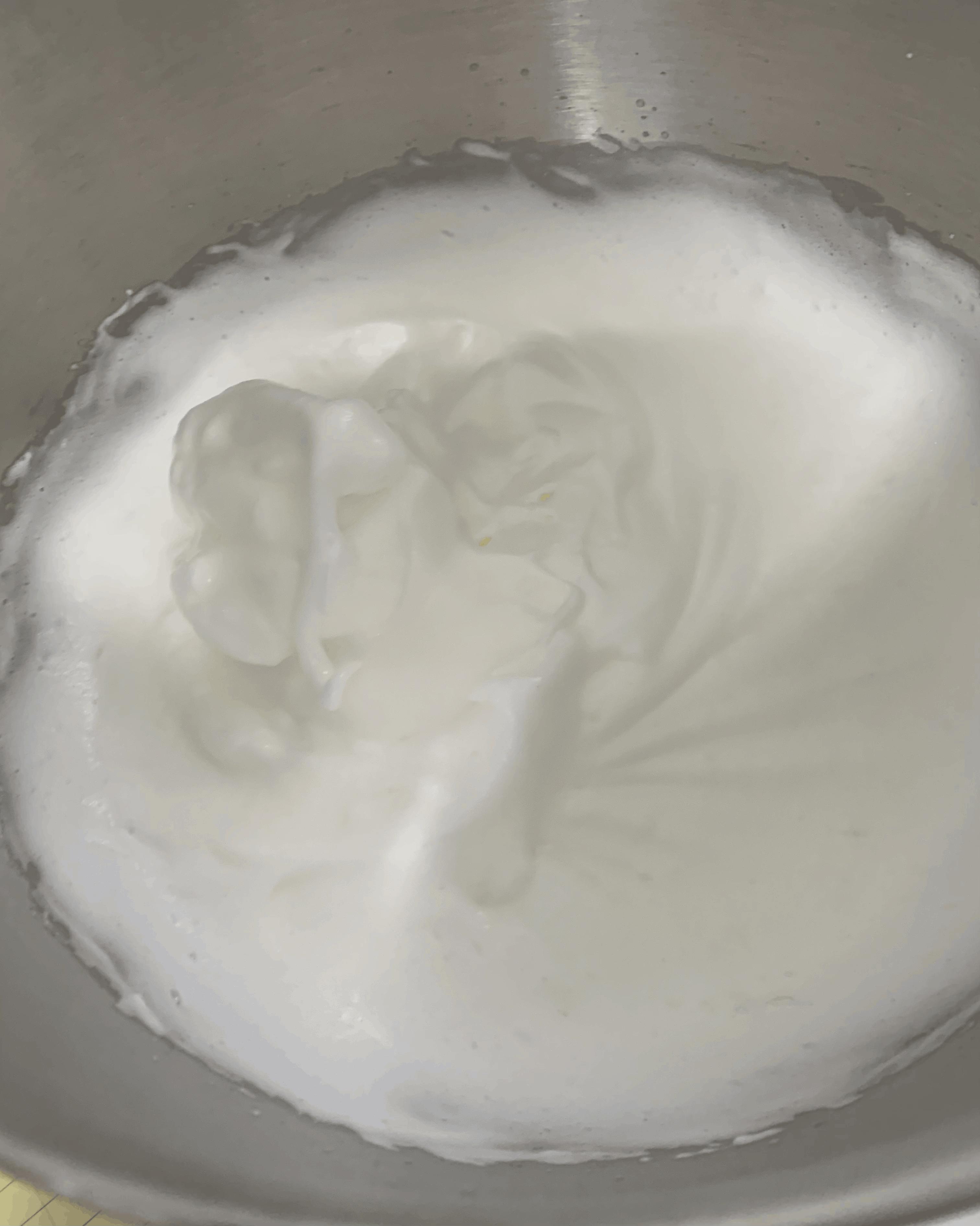 עוגת שוקולד לבן וקוקוס | צילום: ספיר דהן
